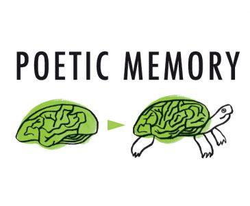 poetic-memory-tortuga-logo